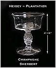 Heisey Plantation Stemmed Champagne Sherbert