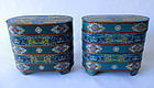 Antique Chinese Pair of Cloisonne Containers