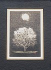 "Japanese Print ""Moon and Tree"" by Joichi Hoshi"