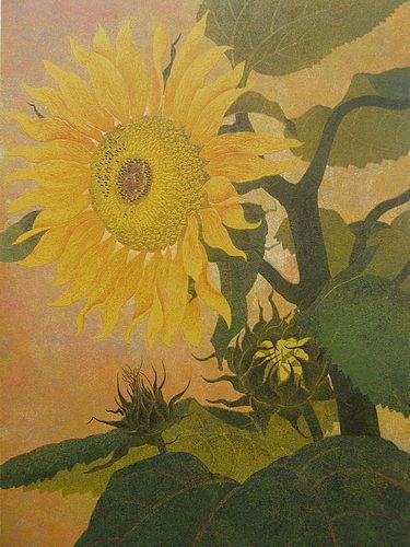Japanese Orignal Silkscreen Print of Sunflowers by Y. Katsuda