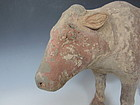 Han Dynasty Chinese Terra Cotta Cow