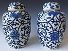 Chinese Pair of Blue and White Jars