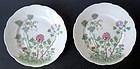 Pair of Chinese Antique Porcelain Plates