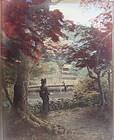 Japanese Antique Large Albumen Print