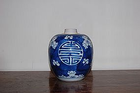 KANGXI PERIOD SMALL BLUE AND WHITE PRUNUS JAR