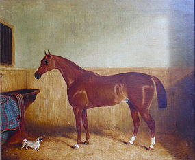 Portrait of a Horse in Stable with dog