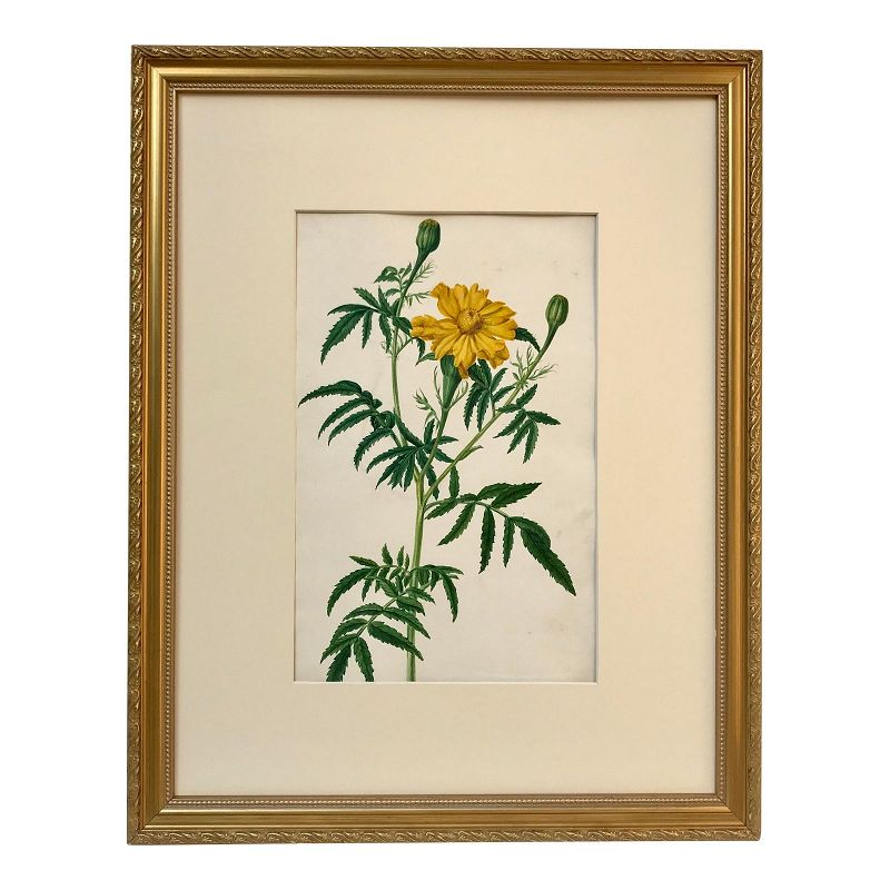 Antique 19th C. Original Watercolor Floral Botanical Painting