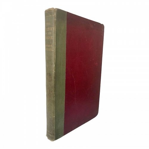 Antique Book the Anatomy of the Horse by George Stubbs 1899