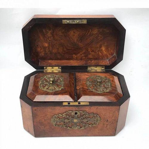 English Antique Walnut Burl Wood Tea Caddy With Brass 19th Century