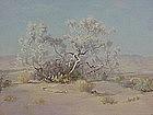Frank Montague Moore Smoke Tree Palm Springs