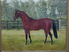 Portrait Thoroughbred Horse  Antique oil c.1890