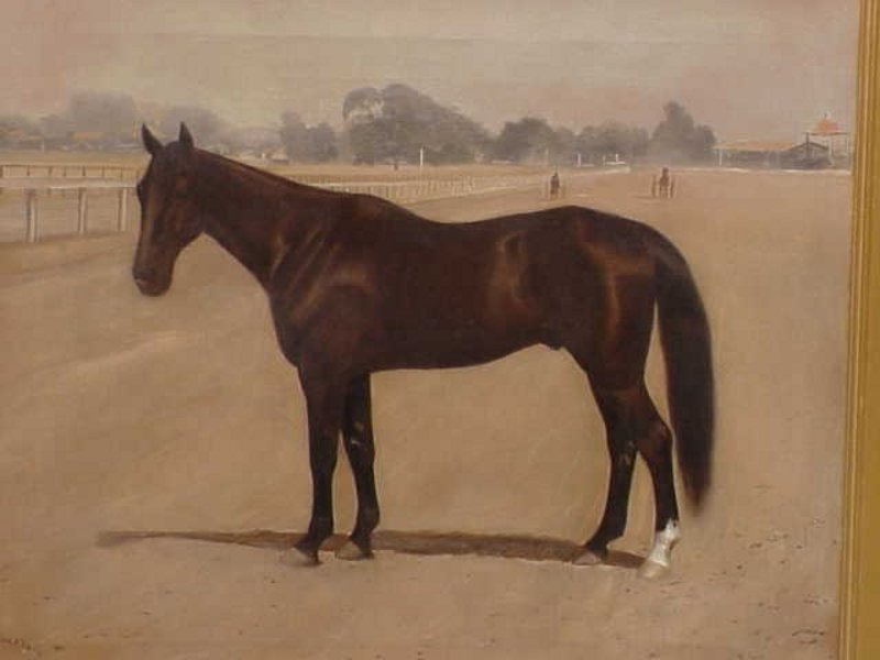Portrait Race Horse Antique oil painting Hillyard 1894
