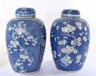 19C Chinese 2 Blue & White Porcelain Ginger Cover Jar Vase Plum Flower