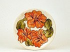 Old English Moorcroft Relief Coral Hibiscus Ivory Plate