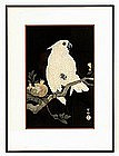 Old Japanese Woodblock Print Parrot Bird Sg
