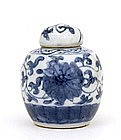 Old Chinese Blue & White Jar Snuff Bottle