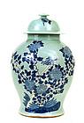 Large Chinese Celadon Blue & White Vase Jar Bird
