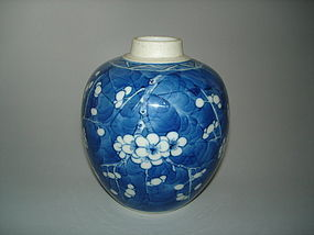 Finely Painted 19/20thC Prunus Jar Kangxi Mark, Guangxu