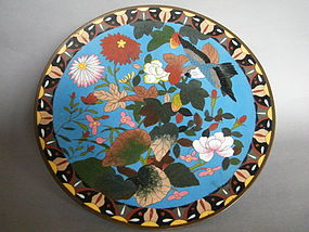 Japanese Cloisonne Bird & Flower Plaque Meiji 1868-1912
