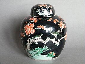 Rare 19C Kangxi Style Famille Noir Jar & Cover Guangxu