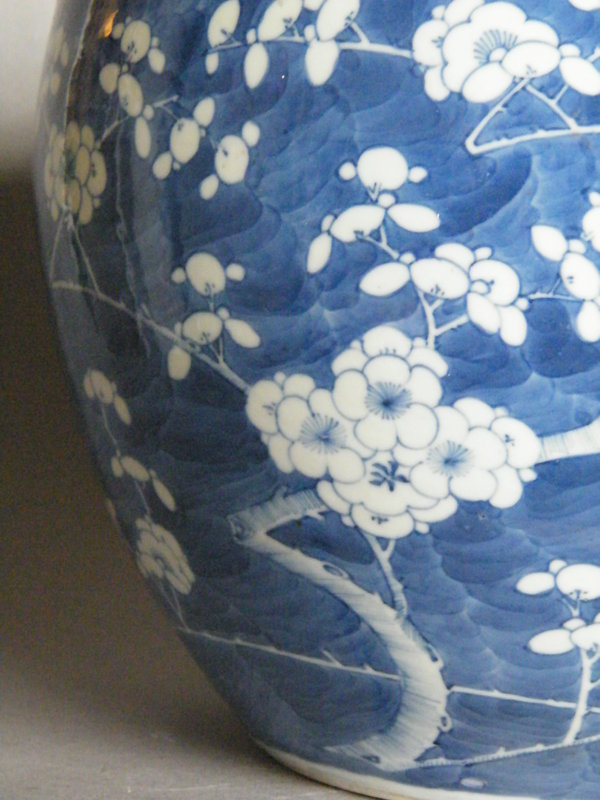 Chinese Prunus Pattern Fish Bowl - Guangxu  (1875-1908)