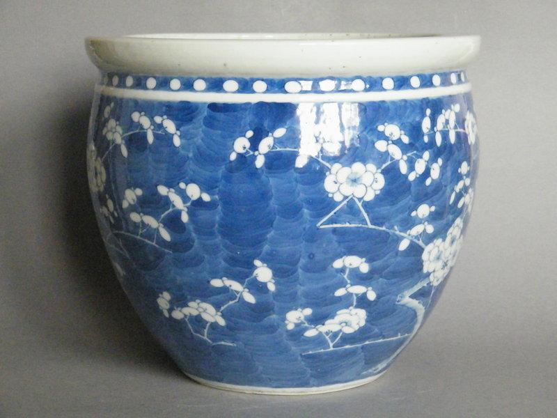 Chinese Prunus Pattern Fish Bowl - Guangxu  (1875-1908)