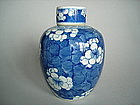 Kangxi style Prunus Pattern Jar - early 20th Century