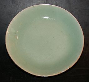 Celadon plate with Mark, 1800 - 1850