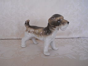 PORCELAIN BORDER TERRIER