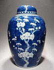 Very Large Chinese Blue and White Prunus Vase 19C