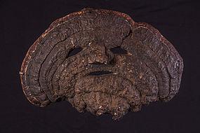Mushroom mask, Himalaya, Nepal
