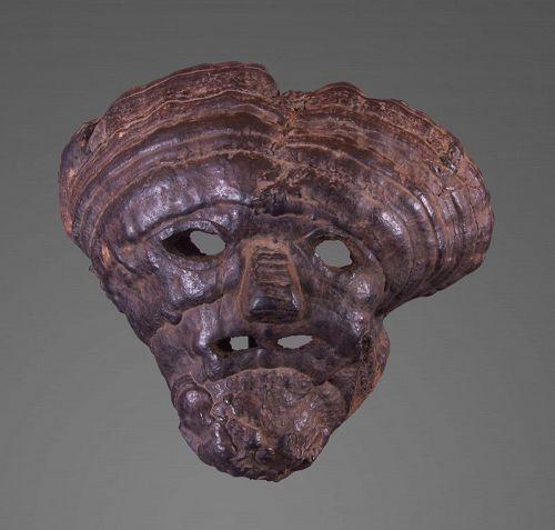 Mushroom mask , Himalaya Nepal