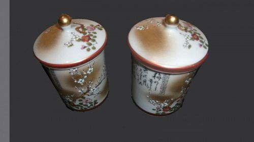 Japane Satsuma-yaki Tea Cups Set Porcelain