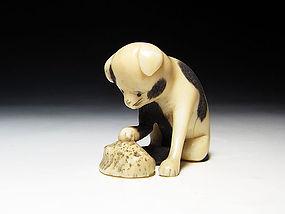 Edo Period Japanese Sagemono Ivory Zoge Netsuke #7