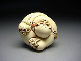 Japanese Antique Round Skull Bone Skeleton Netsuke Okimono Statue Art