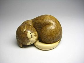 Japanese Antique Zoge Ivory Sleeping Cat Neko Mammoth Okimono Netsuke