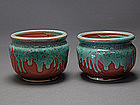 Authentic MEIJI Tea Ceremony MAKUZU KOZAN signed Cups