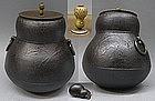 Big Japanese Chagama Tetsubin Tea Cast Iron Pot - GOURD