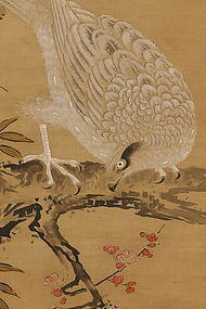 Hawk Perched on Plum Branch, Kano-ha (1834)