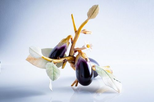 Ryuei � A japanese study of aubergines