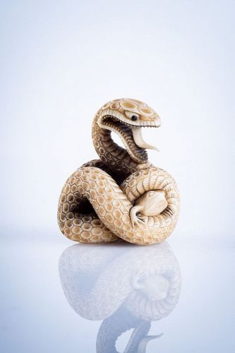 A Japanese ivory netsuke of a coiled snake