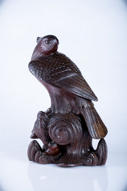 A Japanese study of an hawk