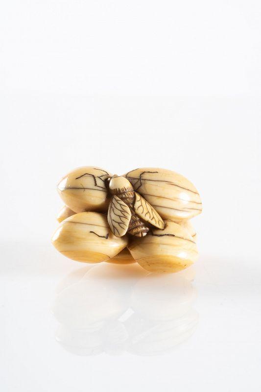 A Japanese ivory netsuke of ginkgo nuts