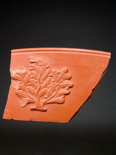Roman Rim Fragment with Berry Bush, North Africa, 250-300 AD