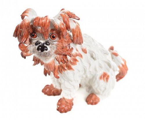 Meisen Original Bolognese Terrier Porcelain Figure