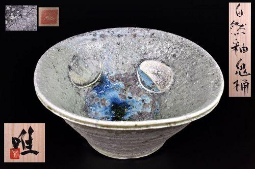 Spectacular Shizen-yu Tub by Tsujimura Yui