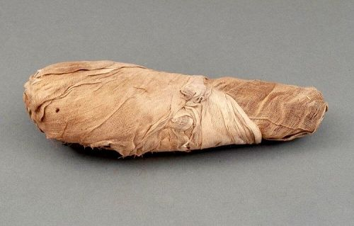 Outstanding Wrapped Ibis Mummy! Well Provenanced!