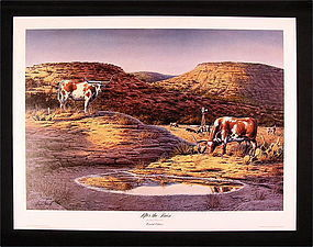 Limited Edition Print by Dennis Shmidt, After the Rain