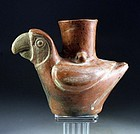 Pre-columbian Moche figural pottery vessel in parrot form!