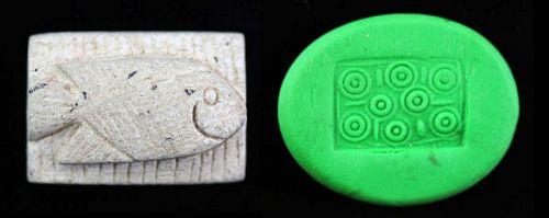 Rare Egyptian Steatite Scaraboid seal with Fish!